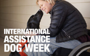 HP_Blog_AssistanceDogWeek_02_1080x675