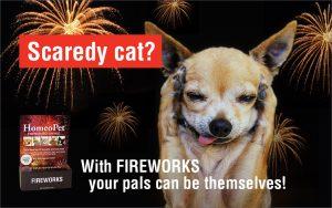 HP Fireworks