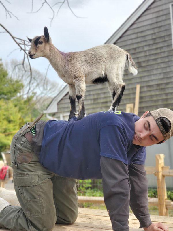 Molly&Hank-goats3