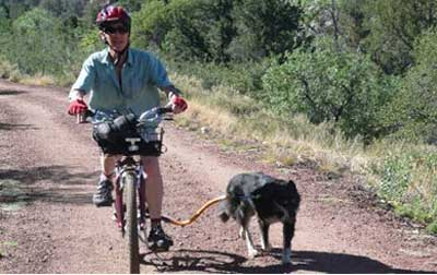 Bike Tow Leash