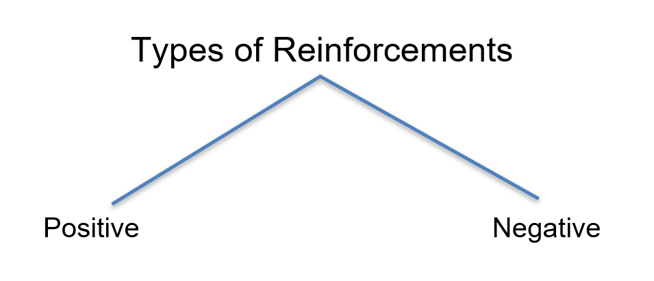 Types of reinforcement in pets
