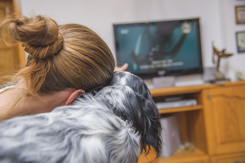 watching-tv-with-your-dog