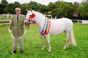 2004-Clifden-Supreme-Champion-Connemara-Pony