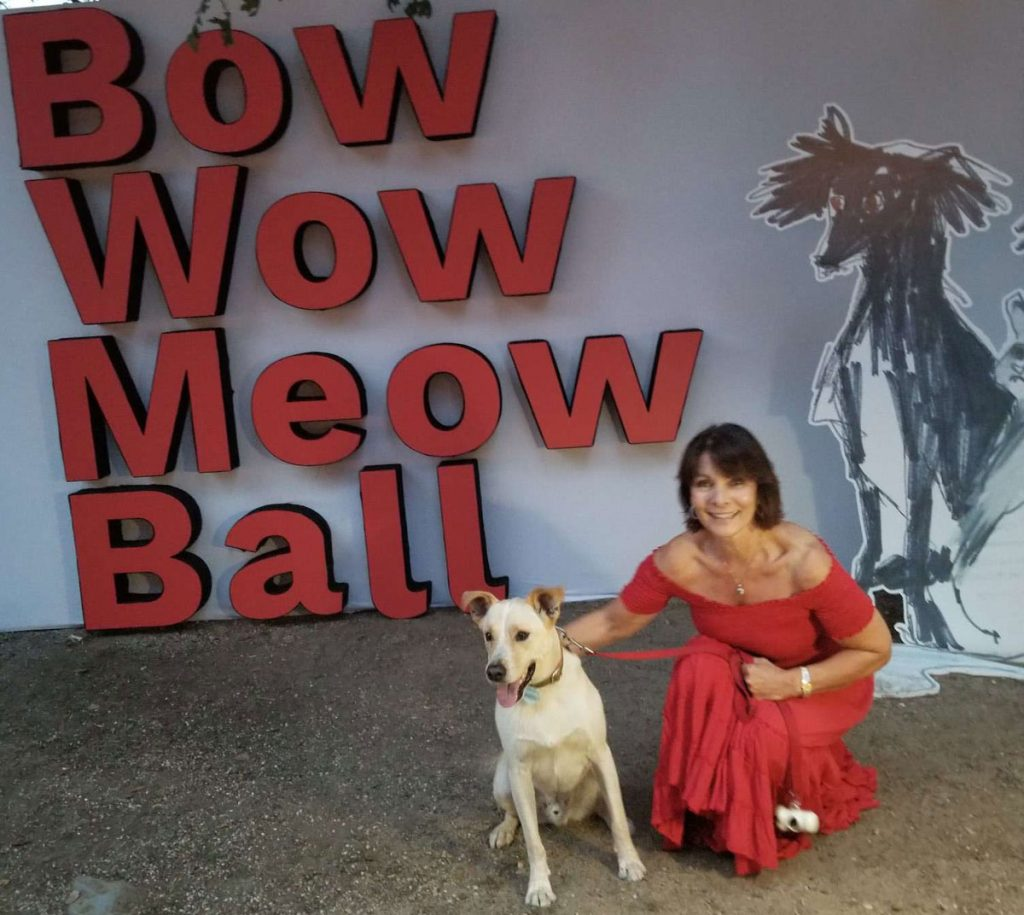 Bow Wow Meow Ball HomeoPet